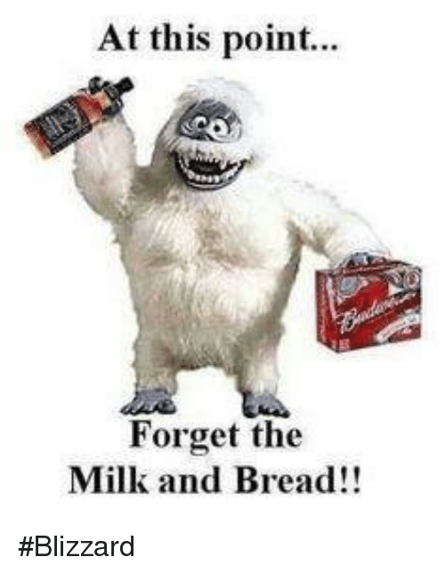 Memes, Blizzard, and 🤖: At this point...  Forget the  Milk and Bread!! #Blizzard