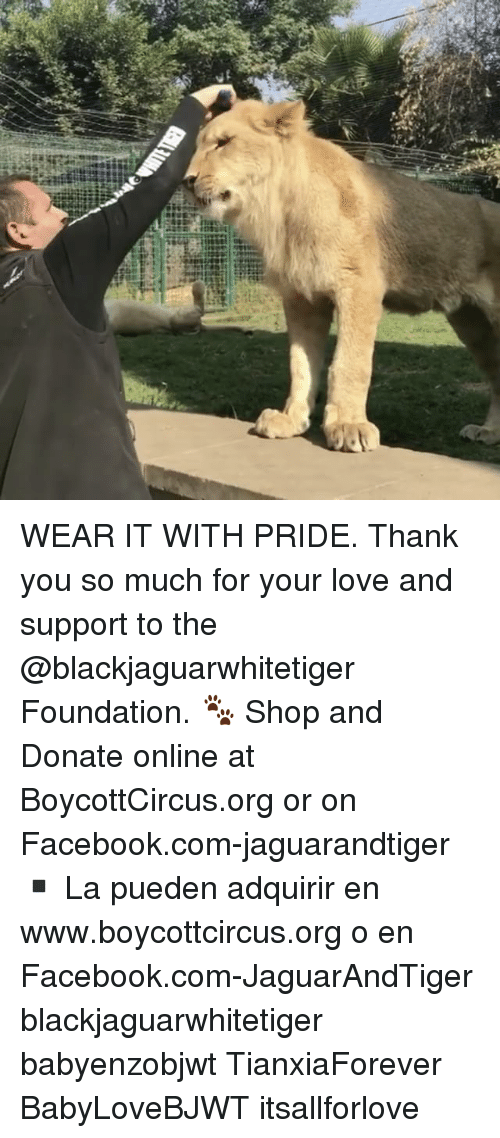 Memes, 🤖, and Red: ata-titian  red WEAR IT WITH PRIDE. Thank you so much for your love and support to the @blackjaguarwhitetiger Foundation. 🐾 Shop and Donate online at BoycottCircus.org or on Facebook.com-jaguarandtiger ▪️ La pueden adquirir en www.boycottcircus.org o en Facebook.com-JaguarAndTiger blackjaguarwhitetiger babyenzobjwt TianxiaForever BabyLoveBJWT itsallforlove