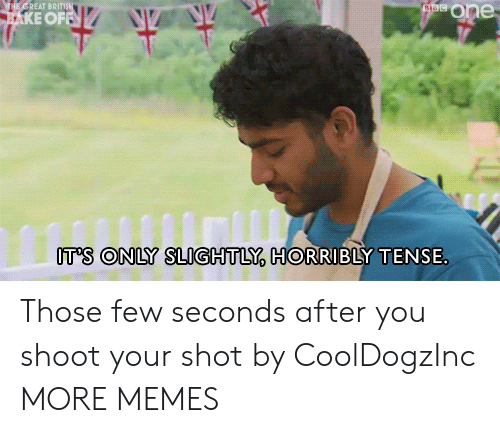 shoot your shot: ataeOne  THE GREAT BRITIS  AKE OFFN  IT'S ONLY SLIGHTLY, HORRIBLY TENSE Those few seconds after you shoot your shot by CoolDogzInc MORE MEMES