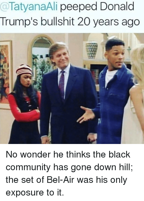 Community, Memes, and Black: aTatyanaAli peeped Donald  Trump's bullshit 20 years ago No wonder he thinks the black community has gone down hill; the set of Bel-Air was his only exposure to it.