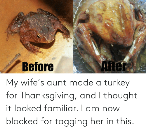 Tagging: Ater  Before My wife's aunt made a turkey for Thanksgiving, and I thought it looked familiar. I am now blocked for tagging her in this.