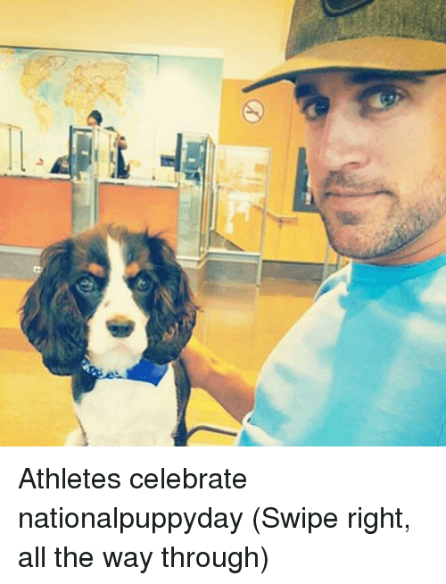 Nfl, Swipely, and Through: Athletes celebrate nationalpuppyday (Swipe right, all the way through)