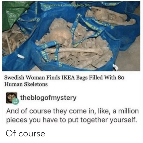 Swedish: atiha Kicka Karke Kinker 2014  Swedish Woman Finds IKEA Bags Filled With 80  Human Skeletons  theblogofmystery  And of course they come in, like, a million  pieces you have to put together yourself. Of course