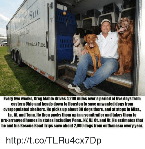 Atimate: ATime  Every two weeks, Greg Mahle drives 4,200 miles over a period of five days from  eastern Ohio and heads down to Houston to save unwanted dogs from  overpopulated shelters. He picks up about 80 dogs there, and at stops in Miss,  La Al. and Tenn. He then packsthem up in a semitrailer and takes themto  pre-arranged homesin states including Penn, NY NJ, Ct. and Vt. He estimates that  he and his Rescue Road Trips save about 2,000 dogs from euthanasia every year. http://t.co/TLRu4cx7Dp