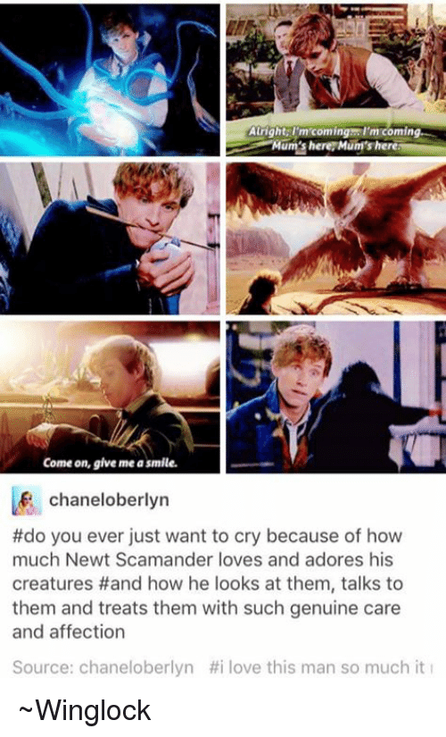 Memes, Affect, and Adorable: Atright, I'm coming I'm coming  Mums here here  Come on, give me asmile.  chaneloberlyn  #do you ever just want to cry because of how  much Newt Scamander loves and adores his  creatures Hand how he looks at them, talks to  them and treats them with such genuine care  and affection  Source: chaneloberlyn #i love this man so much it ~Winglock