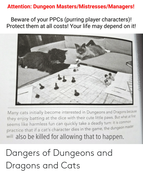 Dungeon Master: Attention: Dungeon Masters/Mistresses/Managers!  Beware of your PPCS (purring player characters)!  Protect them at all costs! Your life may depend on it!  Many cats initially become interested in Dungeons and Dragons because  they enjoy batting at the dice with their cute little paws. But what at first  seems like harmless fun can quickly take a deadly turn: it is common  practice that if a cat's character dies in the game, the dungeon master  will also be killed for allowing that to happen.  /u/closingbelle @re Dangers of Dungeons and Dragons and Cats