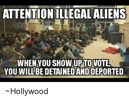 Memes, 🤖, and Hollywood: ATTENTION ILLEGALALIENS  WHENNOUTSHOWUPITOVOTE  YOU WILL BE DETAINEDAND  DEPORTED ~Hollywood