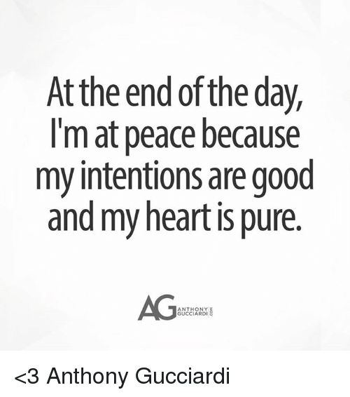 Memes, Good, and Heart: Atthe end of the day,  I'm at peace because  my intentions are good  and my heart is pure.  AG  ANTHONY  GUCCIARDI <3 Anthony Gucciardi