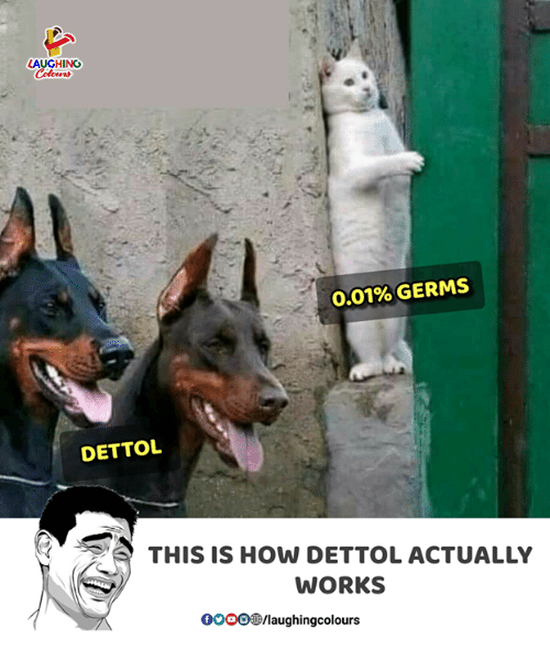 Indianpeoplefacebook, How, and Works: AUGHING  0.01% GERMS  DETTO  THIS IS HOW DETTOL ACTUALLY  WORKS  OOO/laughingcolours