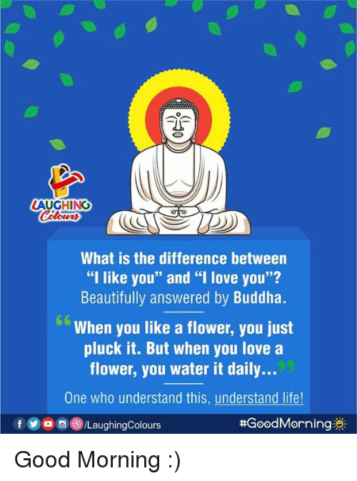 """Life, Love, and Good Morning: AUGHING  What is the difference between  """"I like you"""" and """"I love you""""?  Beautifully answered by Buddha.  When you like a flower, you just  pluck it. But when you love a  flower, you water it daily...  One who understand this, understand life  f 300回(8)/LaughingColours  # GoodMorning券 Good Morning :)"""