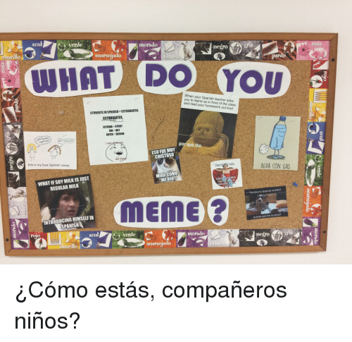 Por Que Tho: aul  verde  morado  negro Bri  rosa  anaranjado  ardo  WHAT DO You  When your Spanish teacher  you to stand up in front of the class  and read your homework out loud  STUDENTS IN SPANISH-ESTUDIANTES  ESTUDIANTES  ESTUDIA STUDY  DIA DAY  ANTES BEFORE  see  por qué tho  ESO FUE MUY  CHISTOSO  id the  this is my fave Spanish meme  AGUA CON GAS  WHATIF SOY MILK IS JUST  REGULAR MILK  MIRA COMO  ME RIO  MET  ST  UR RO  IN  Hombre tu tarea se ve dificil  INTRODUCING HIMSELF IN  SPANISH  MEME  quieres que me la coma?  rojo  Verde  morado  negrois  orllo  anaranjado