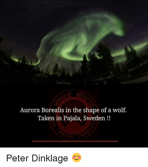 aurora borealis: Aurora Borealis in the shape of a wolf.  Taken in Pajala, Sweden Peter Dinklage 😊
