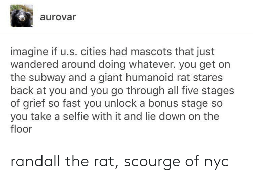 randall: aurovar  imagine if u.s. cities had mascots that just  wandered around doing whatever. you get on  the subway and a giant humanoid rat stares  back at you and you go through all five stages  of grief so fast you unlock a bonus stage so  you take a selfie with it and lie down on the  floor randall the rat, scourge of nyc