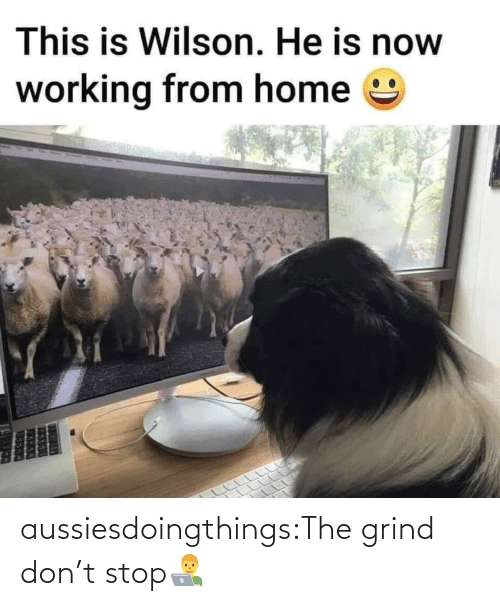 Dont Stop: aussiesdoingthings:The grind don't stop👨💻