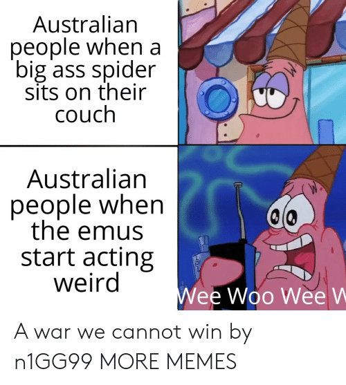 Wee Woo: Australian  people when a  big ass spider  sits on their  couch  Australian  people when  the emus  start acting  weird  Wee Woo Wee W A war we cannot win by n1GG99 MORE MEMES