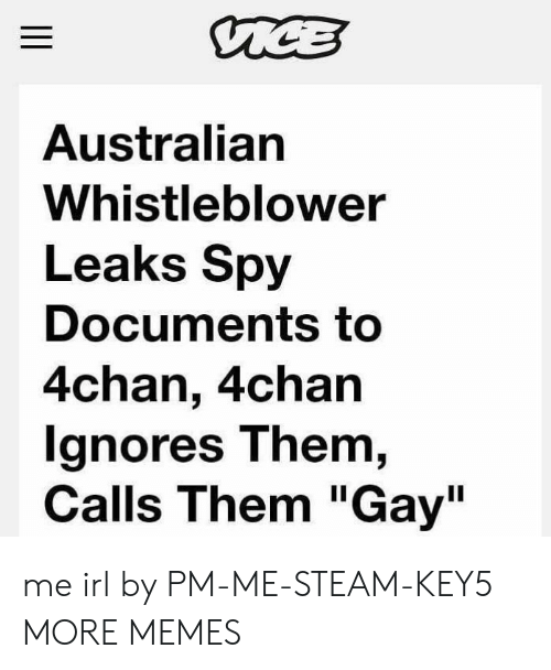 """4chan: Australian  Whistleblower  Leaks Spy  Documents to  4chan, 4chan  gnores T hem,  Calls Them """"Gay"""" me irl by PM-ME-STEAM-KEY5 MORE MEMES"""