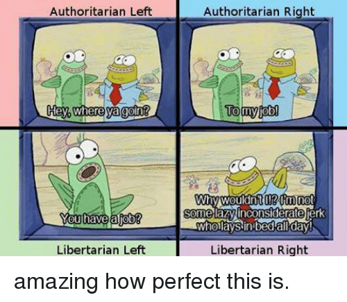 Libertarian: Authoritarian Left  Hey where ya goint  Libertarian Left  Authoritarian Right  Tony  job  TWhoilaySin bed all day  Libertarian Right amazing how perfect this is.