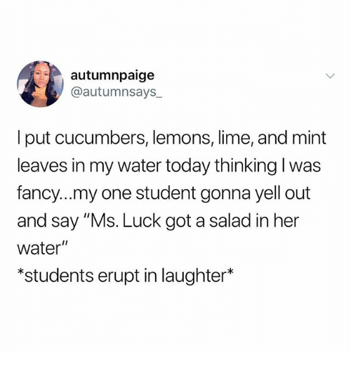"Memes, Fancy, and Today: autumnpaige  @autumnsays_  I put cucumbers, lemons, lime, and mint  leaves in my water today thinking l was  fancy...my one student gonna yell out  and say ""Ms. Luck got a salad in her  water""  *students erupt in laughter*"