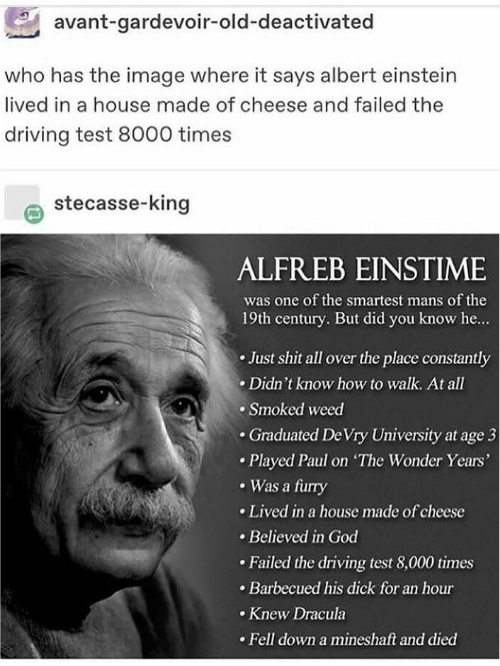 gardevoir: avant-gardevoir-old-deactivated  who has the image where it says albert einstein  lived in a house made of cheese and failed the  driving test 8000 times  stecasse-king  ALFREB EINSTIME  was one of the smartest mans of the  19th century. But did you know he...  Just shit all over the place constantly  Didn't know how to walk. At all  Smoked weed  .Graduated De Vry University at age 3  Played Paul on The Wonder Years'  Was a furry  Lived in a house made of cheese  Believed in God  Failed the driving test 8,000 times  Barbecued his dick for an hour  Knew Dracula  Fell down a mineshaft and died