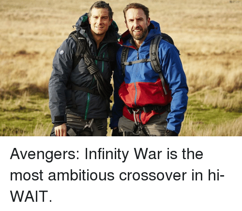 Avengers Infinity War: Avengers: Infinity War is the most ambitious crossover in hi- WAIT.