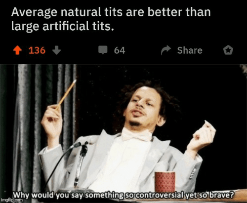 Imgflip Com: Average natural tits are better than  large artificial tits.  會 136  Share  64  Why would you say something so controversial yet so brave?  imgflip.com