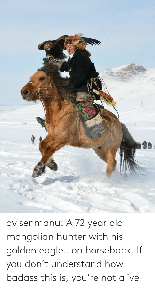 Eagle: avisenmanu:  A 72 year old mongolian hunter with his golden eagle…on horseback. If you don't understand how badass this is, you're not alive