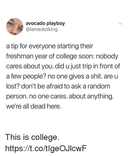 College, Funny, and Shit: avocado playboy  @lamedotking  a tip for everyone starting their  freshman year of college soon: nobody  cares about you. did u just trip in front of  a few people? no one gives a shit. are u  lost? don't be afraid to ask a random  person. no one cares. about anything  we're all dead here This is college. https://t.co/tIgeOJlcwF