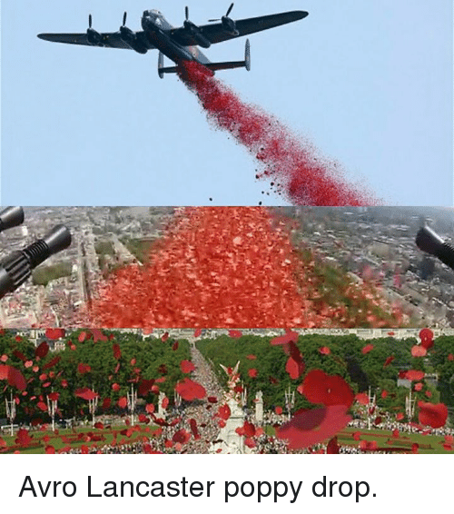 Memes, Poppies, and 🤖: Avro Lancaster poppy drop.