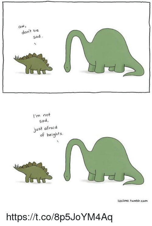 Memes, Tumblr, and Sad: aw  don't be  sad  I'm not  sad,  ust afraid  of heights.  lizclimo, tumblr, com https://t.co/8p5JoYM4Aq