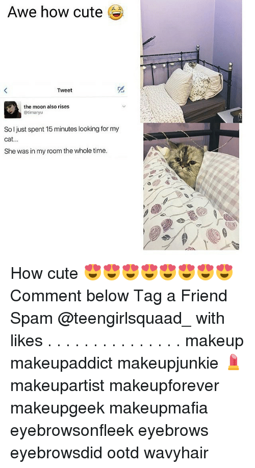 Cats, Cute, and Memes: Awe how cute  Tweet  the moon also rises  timaryu  So ljust spent 15 minutes looking for my  Cat  She was in my room the whole time. How cute 😍😍😍😍😍😍😍😍 Comment below Tag a Friend Spam @teengirlsquaad_ with likes . . . . . . . . . . . . . . . makeup makeupaddict makeupjunkie 💄 makeupartist makeupforever makeupgeek makeupmafia eyebrowsonfleek eyebrows eyebrowsdid ootd wavyhair