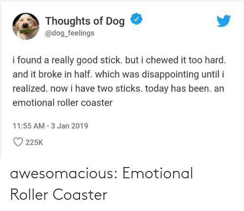 Emotional: awesomacious:  Emotional Roller Coaster