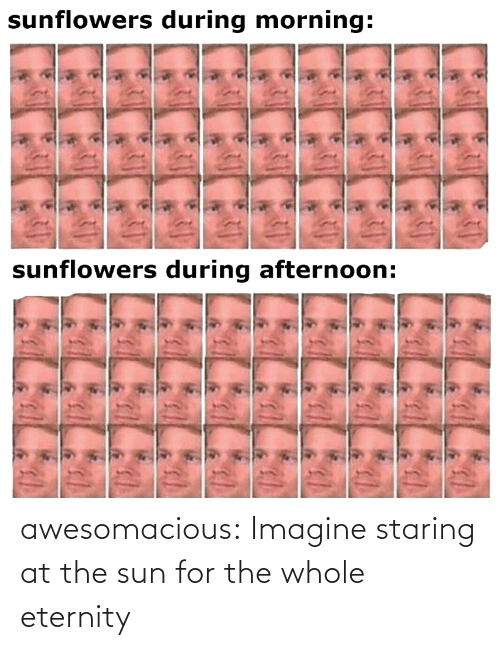 For The: awesomacious:  Imagine staring at the sun for the whole eternity