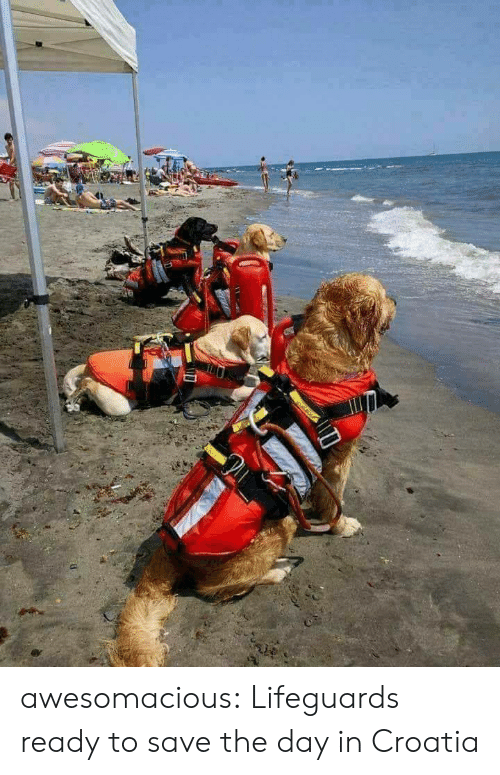 save-the-day: awesomacious:  Lifeguards ready to save the day in Croatia
