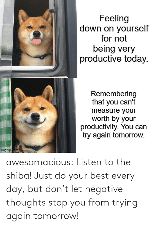Tomorrow: awesomacious:  Listen to the shiba! Just do your best every day, but don't let negative thoughts stop you from trying again tomorrow!