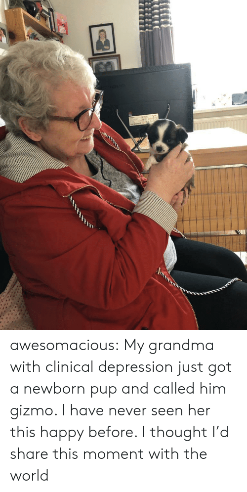 newborn: awesomacious:  My grandma with clinical depression just got a newborn pup and called him gizmo. I have never seen her this happy before. I thought I'd share this moment with the world