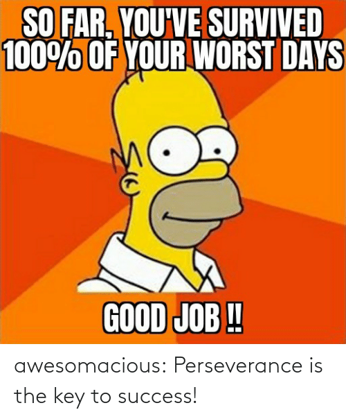 Key To: awesomacious:  Perseverance is the key to success!