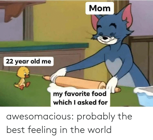 Best Feeling: awesomacious:  probably the best feeling in the world