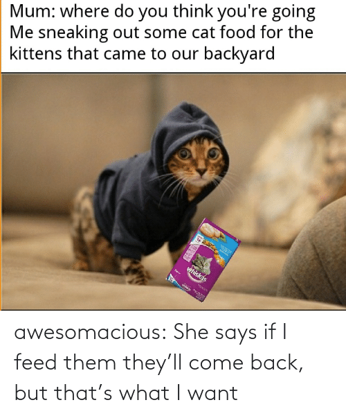 Feed: awesomacious:  She says if I feed them they'll come back, but that's what I want