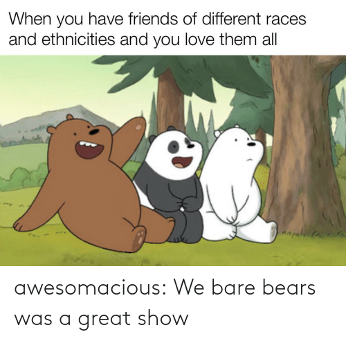 Bears: awesomacious:  We bare bears was a great show
