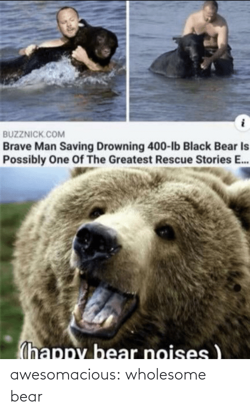 Wholesome: awesomacious:  wholesome bear
