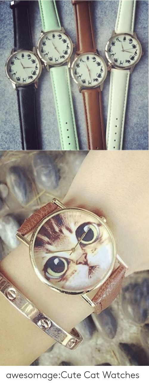 cute cat: awesomage:Cute Cat Watches