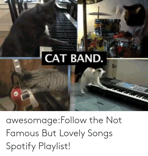 famous: awesomage:Follow the Not Famous But Lovely Songs Spotify Playlist!