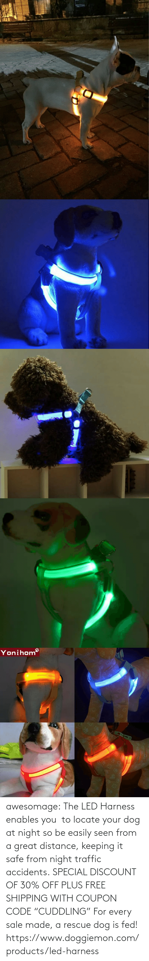 "rescue dog: awesomage:   The LED Harness enables you  to locate your dog at night so be easily seen from a great distance, keeping it safe from night traffic accidents. SPECIAL DISCOUNT OF 30% OFF PLUS FREE SHIPPING WITH COUPON CODE ""CUDDLING"" For every sale made, a rescue dog is fed!   https://www.doggiemon.com/products/led-harness"