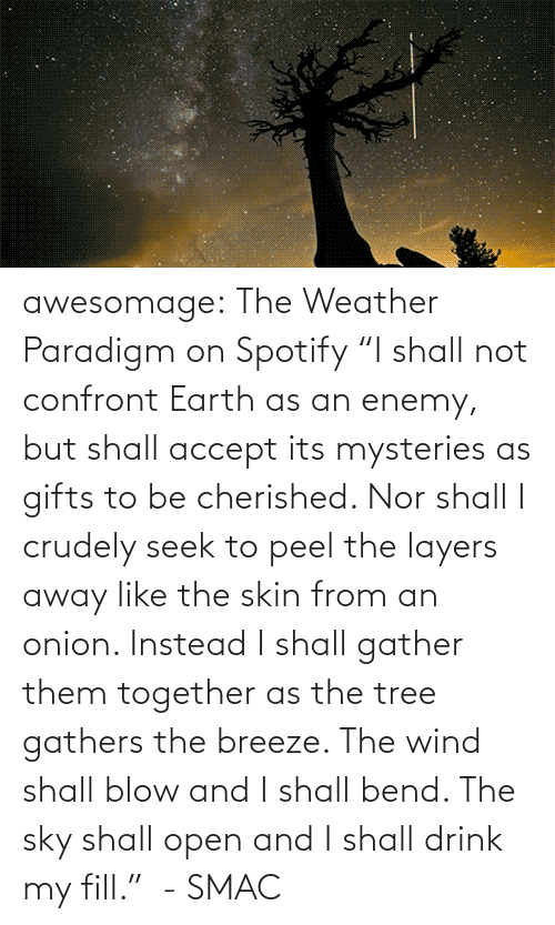 "The Weather: awesomage:   The Weather Paradigm on Spotify   ""I shall not confront Earth as an enemy, but shall accept its mysteries as gifts to be cherished. Nor shall I crudely seek to peel the layers away like the skin from an onion. Instead I shall gather them together as the tree gathers the breeze. The wind shall blow and I shall bend. The sky shall open and I shall drink my fill.""  - SMAC"