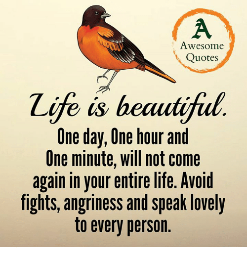 memes: Awesome  Quotes  e  is beautifial  One day, One hour and  One minute, will not come  again in your entire life. Avoid  fights, angriness and speak lovely  to every person.