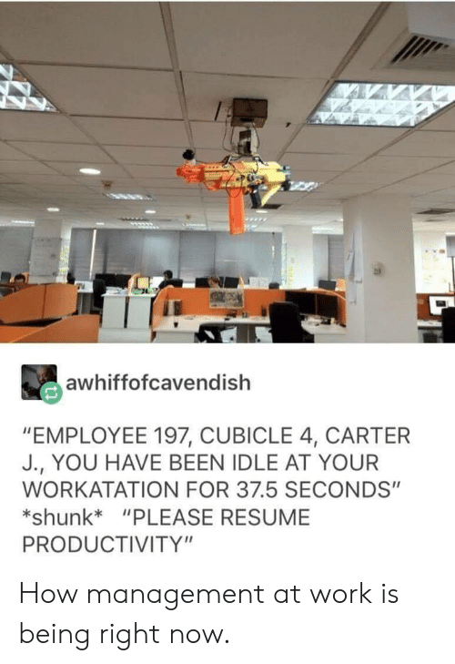 """productivity: awhiffofcavendish  """"EMPLOYEE 197, CUBICLE 4, CARTER  J., YOU HAVE BEEN IDLE AT YOUR  WORKATATION FOR 37.5 SECONDS""""  shunk*""""PLEASE RESUME  PRODUCTIVITY"""" How management at work is being right now."""