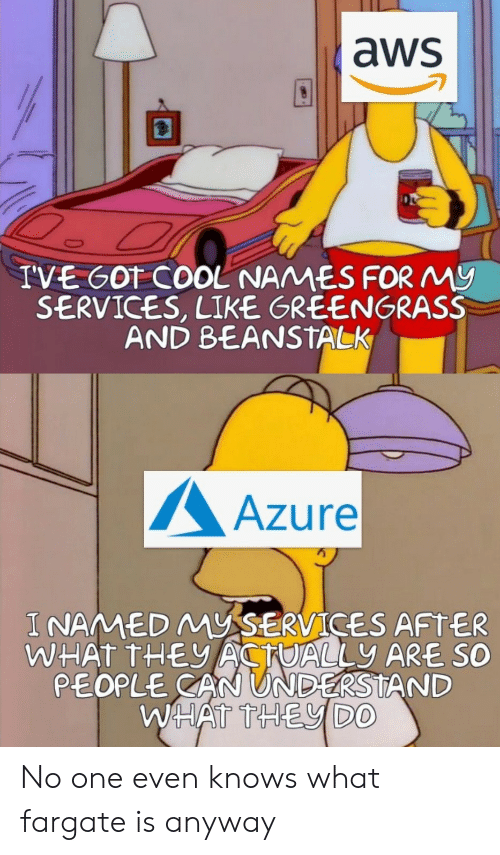 aws: aws  IVE GOT COOL NAMES FORMy  SERVICES, LIKE GREENGRASS  AND BEANSTALK  Azure  I NAMED MYSERVICES AFTER  WHAT THEACTUALLY ARE SO  PEOPLE CAN UNDERSTAND  WHATTHEVDO No one even knows what fargate is anyway