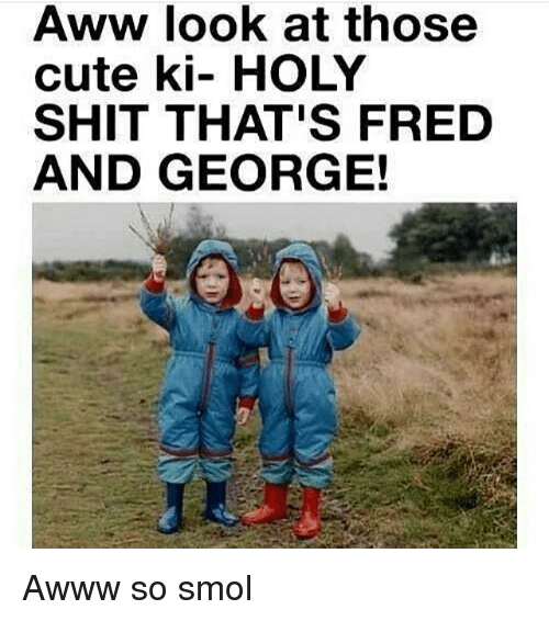 Aww, Cute, and Memes: Aww look at those  cute ki- HOLY  SHIT THAT'S FRED  AND GEORGE! Awww so smol