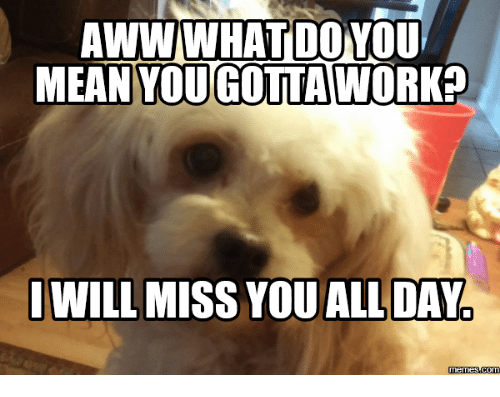 25 best memes about ill miss you meme ill miss you memes