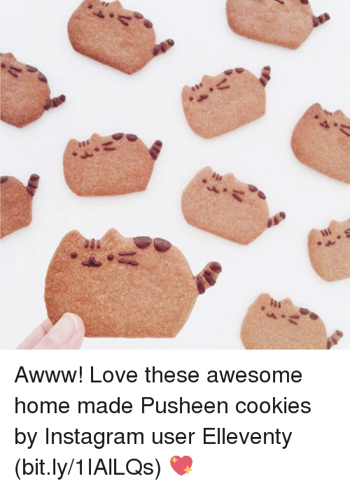 Cookies, Dank, and Instagram: Awww! Love these awesome home made Pusheen cookies by Instagram user Elleventy (bit.ly/1IAlLQs) 💖